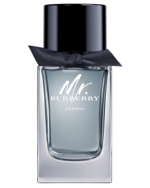 Mr Burberry Indigo Eau de Toilette